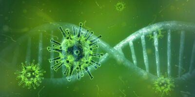 baktériumok vs vírusok