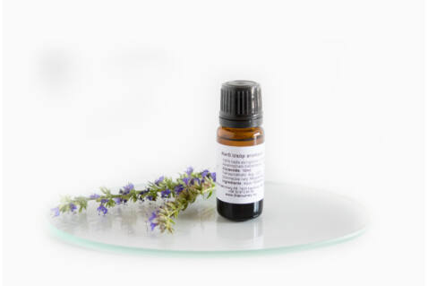 Kerti izsóp aromavíz - Hyssopus Officinalis - 10 ml
